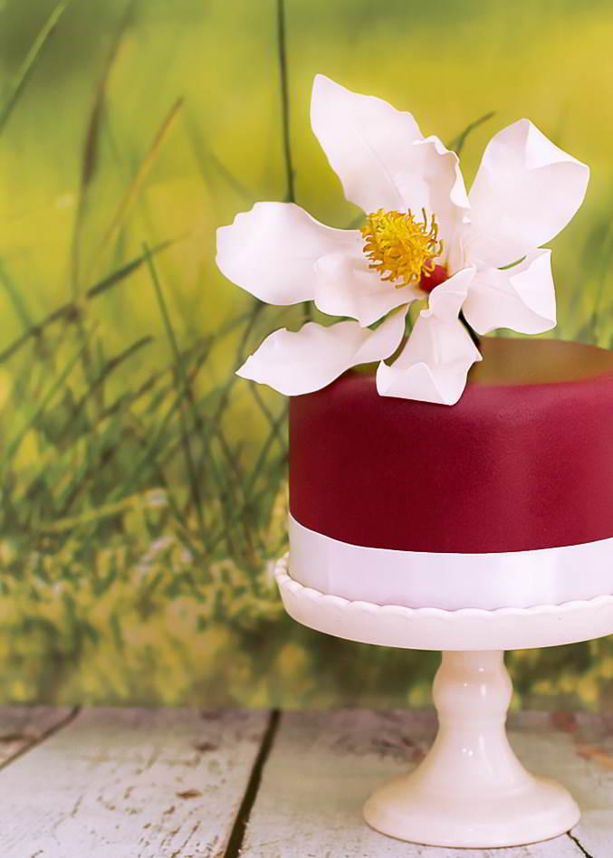 magnolia de pasta de goma